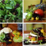 Basil Caprese Salad