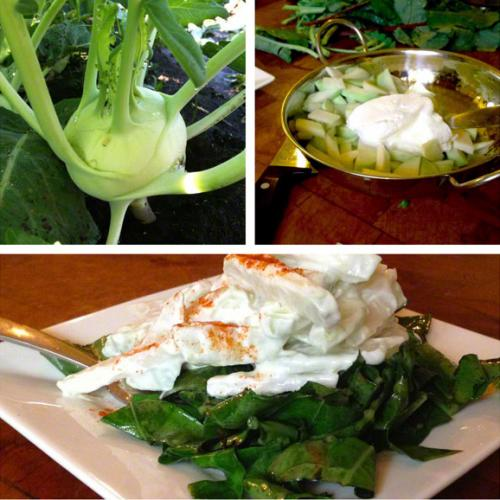 Kohlrabi-Yogurt Salad